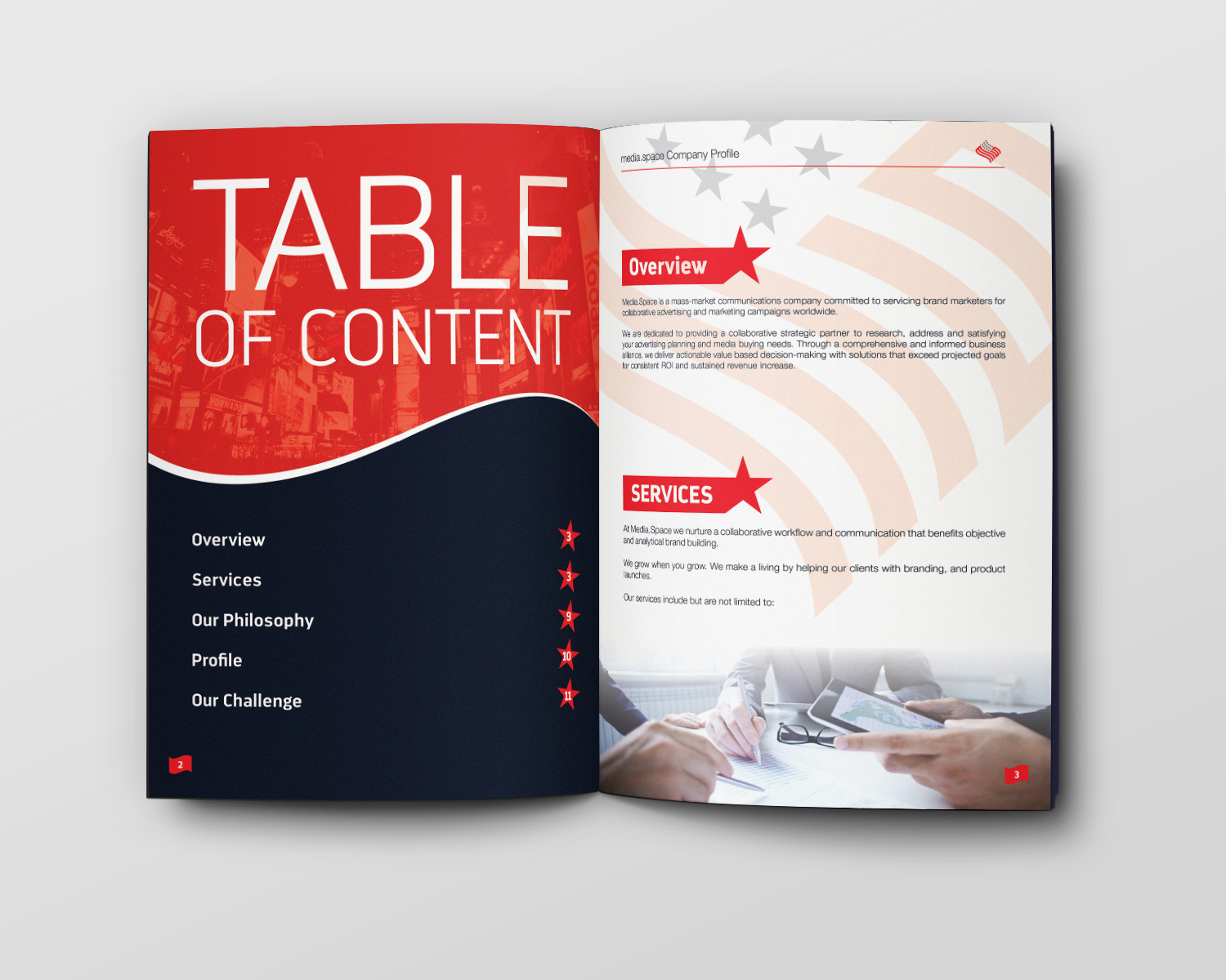Company Profile Table of contents